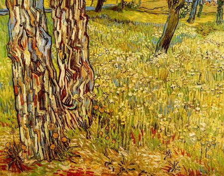 Tree Trunks In The Grass resim