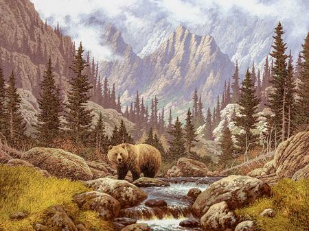 Bear resim