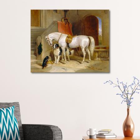 Beyaz At ve Köpekler resim2