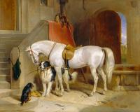 Beyaz At ve Köpekler - HT-C-006