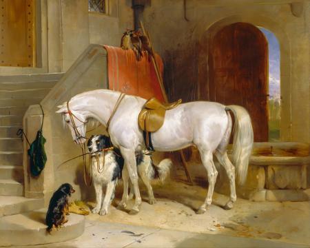 Beyaz At ve Köpekler resim