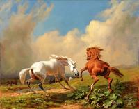 Beyaz ve Kahverengi At - HT-C-013