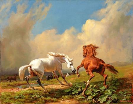 Beyaz ve Kahverengi At resim
