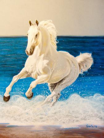 Denizde Koşan At resim