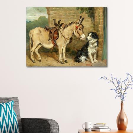 Eşek ve Köpek resim2