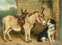 Eşek ve Köpek - HT-C-040