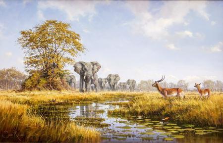 Filler ve Ceylanlar resim