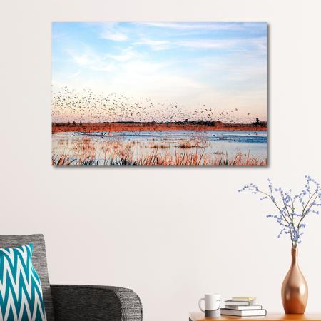 Göçmen Kuşlar resim2