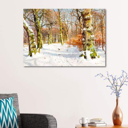 Karlı ve Güneşli Kış Manzarası resim2