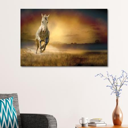 Koşan Beyaz At resim2