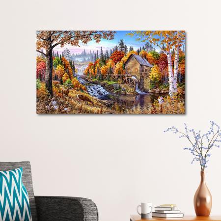 Orman ve Su Değirmeni resim2