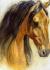 Yağlıboya Kahverengi At k0