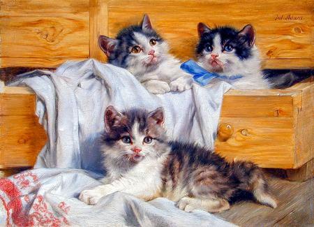 Yağlıboya Kedi resim