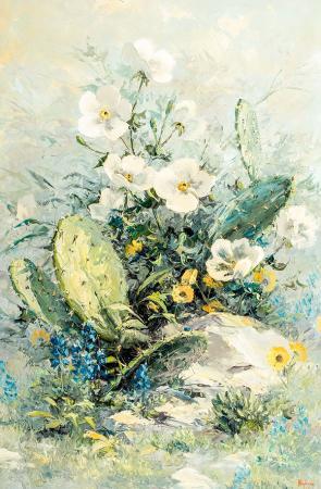 Adenium Çiçegi resim