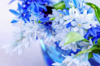 Bahar Çiçekleri - CT-C-164