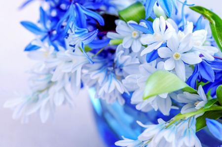 Bahar Çiçekleri resim