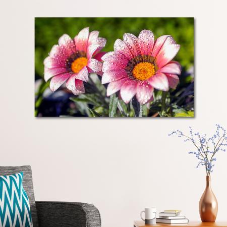 Bahar Çiçekleri resim2