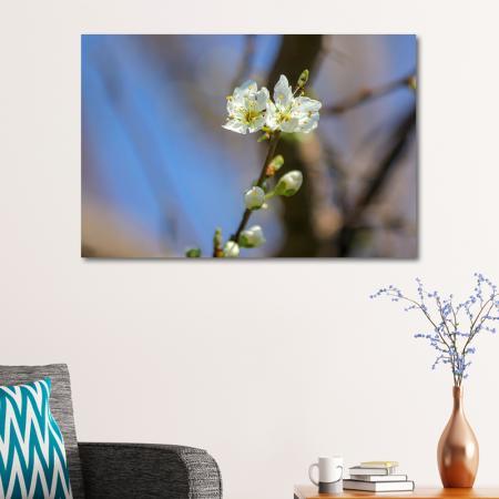 Çiçekli Dal resim2