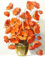 Cineraria Çiçeği - CT-C-076