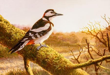 Daldaki Kuş resim