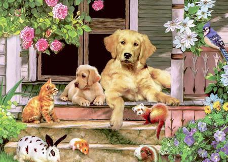 Hayvanlar Alemi resim