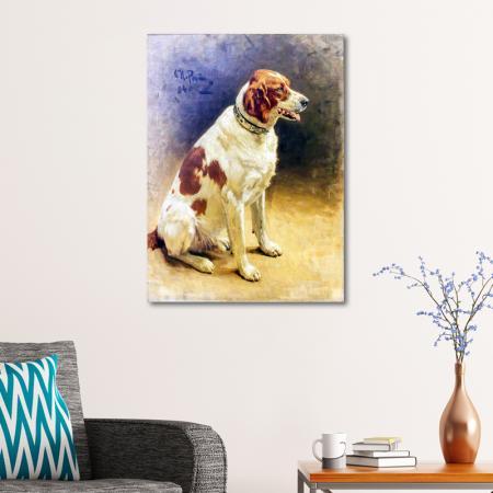 Kahverengi Köpek resim2