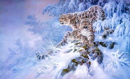 Kar Kaplanları resim