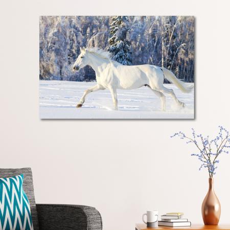 Karlar Üzerinde Beyaz At resim2
