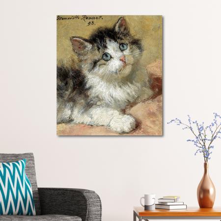 Kedi resim2