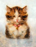 Kedi Portresi - HT-C-056