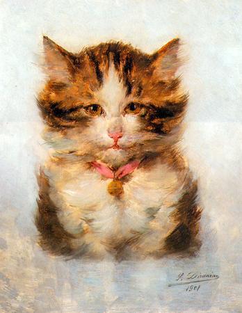 Kedi Portresi resim