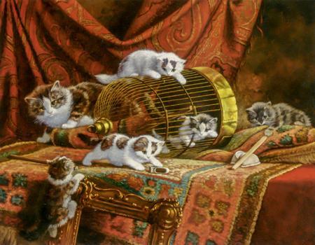Kediler resim