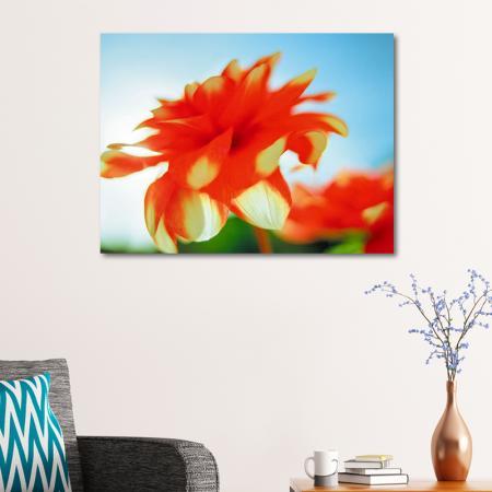 Kırmızı Çiçek resim2