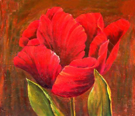 Kırmızı Gelincik resim