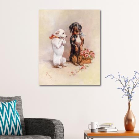 Köpekler resim2
