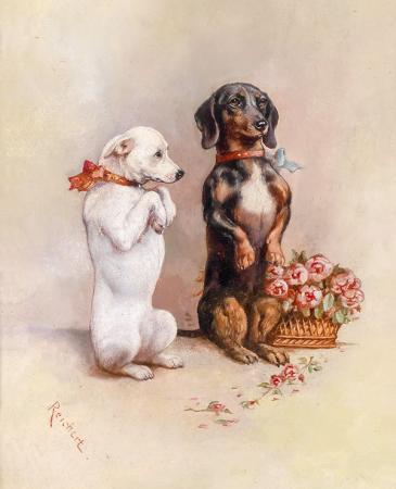 Köpekler resim