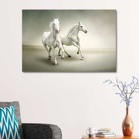 Koşan Beyaz Atlar resim2