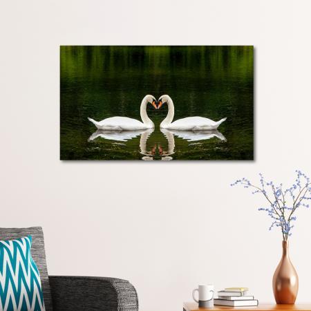Kuğular resim2