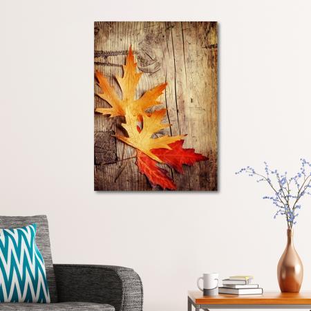 Kurumuş Çınar Yaprakları resim2