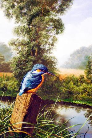 Kuş 0