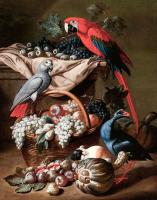 Kuşlar Alemi - HT-C-074