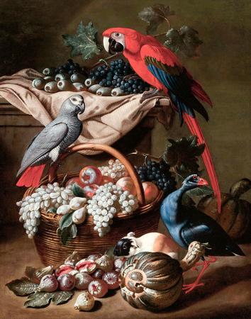 Kuşlar Alemi resim