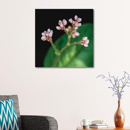 Makro Çiçek resim2