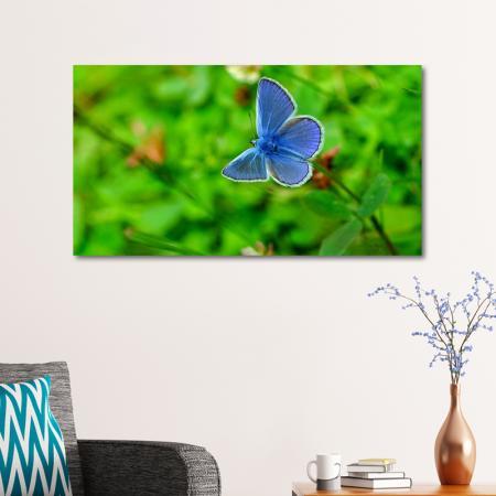 Mavi Kelebek Yeşil Yapraklar resim2
