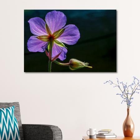 Mor Çiçek resim2