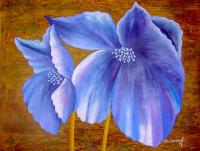 Mor Çiçek - CT-C-266