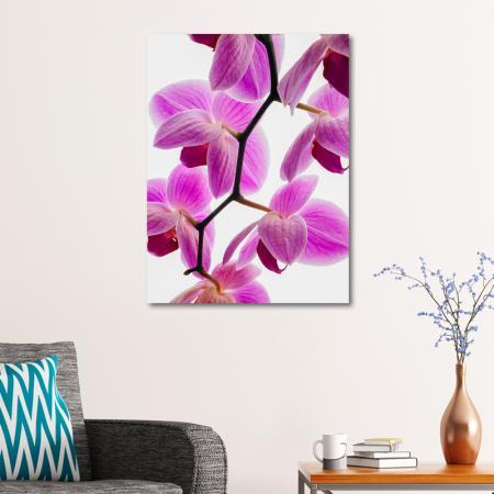 Mor Orkide resim2