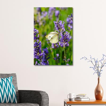 Mor Sümbül ve Kelebek resim2