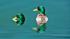 Ördekler k0