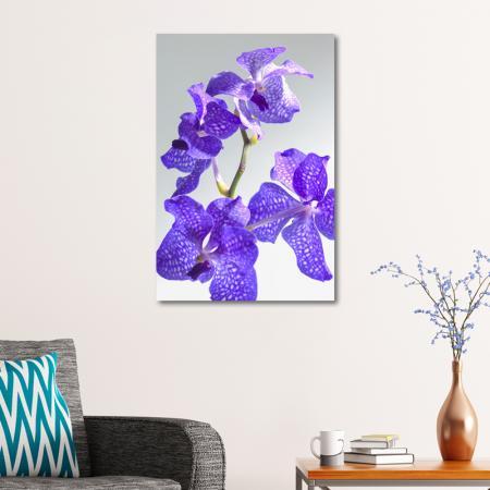 Orkide Yaprakları resim2